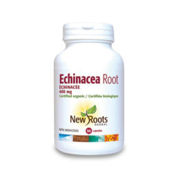 New Roots Echinacea Root