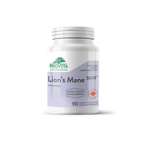 Lion's Mane(Hericium erinaceus)