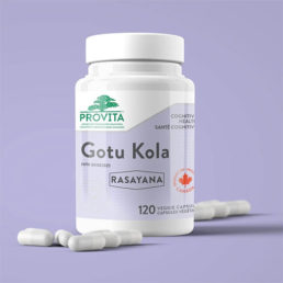 Gotu Kola - the plant for longevity